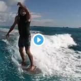 『見える?イルカも一緒にサーフィンしているね♡』の画像