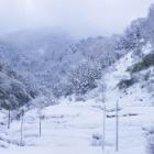 『大出日山(おおしびさん 602m)雪山登山』の画像