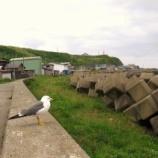 『【2014年道南の旅】原口漁港の街『自動販売機は一台の静かな集落』』の画像