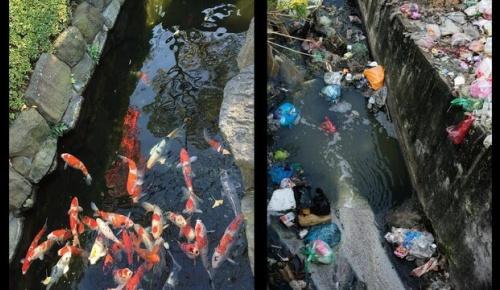 インド人「日本の水源と比較して汚れているのはどっち?」(海外の反応)