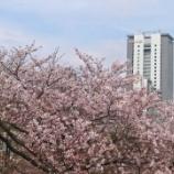 『【写真】Xperia Xc 新宿~飯田橋~秋葉原』の画像