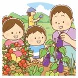 『【クリップアート】家庭菜園・野菜づくりをする親子のイラスト』の画像