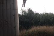 【悲報】グレタ・トゥンベリの人形がローマの橋につるされる