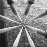 『ナノ兵器の開発へ』の画像