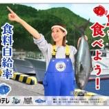 『【速報】マジかよwww 白石麻衣さん、テレビ放送直後に『水産庁広報』から即刻オファーが!!!!!!』の画像