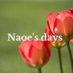 Naoe's days
