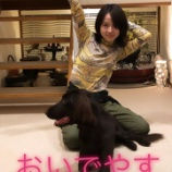 『【元乃木坂46】1ヶ月くらい経ってここに犬いるの初めて気づいた・・・』の画像