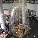 『いちょうドーム』の画像