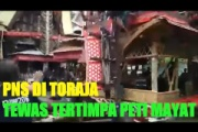 【インドネシア】実の母親の葬式で棺桶が落下 40歳の息子の頭に直撃し死亡(動画)
