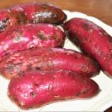 『国東の食環境(276)サツマイモ』の画像