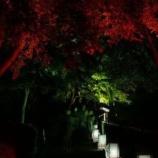『八王子の心霊スポットで撮れた心霊写真見てくれ』の画像