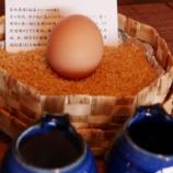 『【北海道ひとり旅】江差旅庭 群来 朝食『和食お膳』』の画像