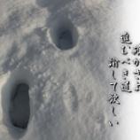 『進むべき道』の画像