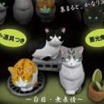 暗闇で猫の目が光る!「ハチワレ猫たちの集会。」がフィギュアになってガチャに登場!