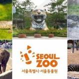 『韓国の動物園で大量死』の画像
