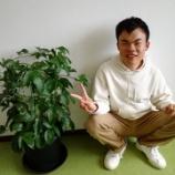 『【長崎】パッションフルーツPART2』の画像