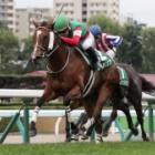 『【キーンランドC結果】3歳牝馬レイハリアが押し切り重賞連勝!』の画像