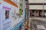 オカメインコが逃げちゃったみたい!~JR星田駅のだんじり保存会の掲示板~