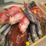 『鮮魚店の仕事キツすぎワロタwww』の画像