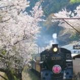 『大井川鐵道 SLかわね路号』の画像