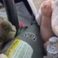 ドライブ中に小鳥が車の中に入ってきた。停車して外に逃がしてみる → ファッ!?