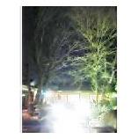 『櫻座』の画像