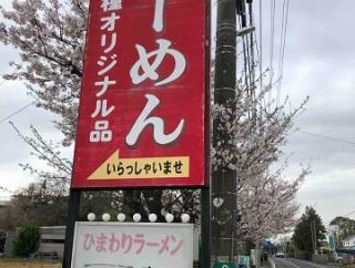 老舗ラーメン店が2代目により復活 ひまわりラーメン@鎌ヶ谷市 千葉ラーメン