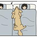 エフ漫画『極上アロマ』