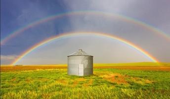 【決定的瞬間】奇跡の瞬間を撮影した自然現象の写真20選