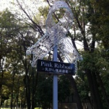 『戸田市後谷公園街角広場入口にピンクリボン運動イルミネーションが設置されました』の画像