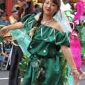 第36回浅草サンバカーニバル2017 その8(カンタ・ブラジル行進部)