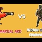 【中印国境地帯】中国の「総合格闘技民兵」に対抗し、インドは「殺人部隊」を派遣 [海外]