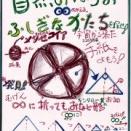 小学生から学ぶ自然の中の数学 折り紙でわかる無限級数とフラクタルマトリョーシカ