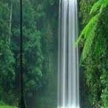 『2020.4.29 崎谷 博征氏特集 -『自然の滝はなぜ気持ちいいのか?』』の画像