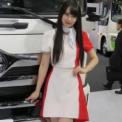 東京モーターショー2017 その57(日野自動車)