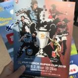『【サッカー観戦記】2019 FUJI XEROX SUPER CUP 川崎フロンターレ vs 浦和レッズ』の画像