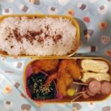 『アメリカdeお弁当⑦』の画像