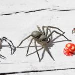 「クモコレ!」日本の蜘蛛たちがストラップフィギュアになってガチャに登場!