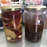 『レーズンとリンゴの酵母おこし《失敗》』の画像