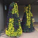 『次の日曜日は「戸田植木市花フェスタ2017」 市役所1階入口に出番を待つフラワーツリーがあります』の画像