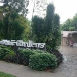 『シンガポール世界遺産 Singapore Botanic Garden』の画像