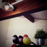 『BinOWAVE28見学会と鳥』の画像