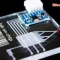 マイクロフルイディクスは、研究者が細胞レベルで操作するのに役立ちます!