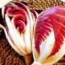 春菊とパプリカの白和えがくらしのアンテナに掲載です!