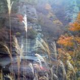 『随分と秋らしく』の画像