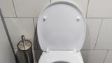 仕事中ワイ「トイレ行くか…」スッ 隣の席の同僚「トイレ?うんこ?」