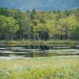 『【北海道ひとり旅】オホーツクドライブ 斜里町 『知床五湖』』の画像