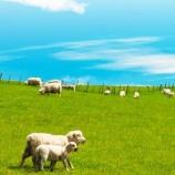 『羊毛断熱のなぜ?』の画像