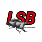 L.S.B. STYLE