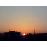 『朝の太陽』の画像